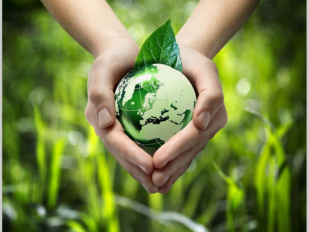 RETROSPEKTIVA 2020 - Investicije u oblasti EKOLOGIJE koje su izazvale najveće interesovanje korisnika eKapije
