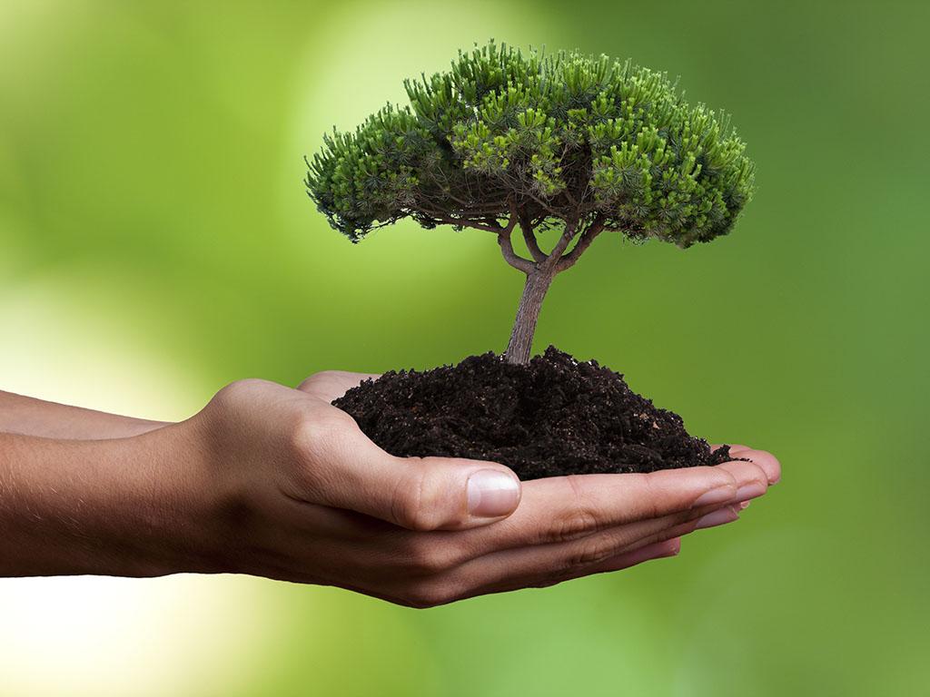 Vlada TK izdvaja 2,53 mil KM za projekte zaštite okoliša