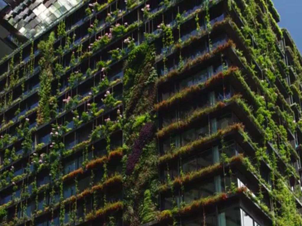 Nacionalna asocijacija zelenih krovova i terasa promoviše ideje zelene gradnje