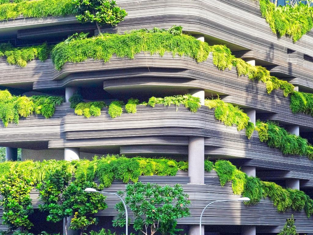 """""""Zeleno"""" projektovanje enterijera - Kako do održivih rešenja?"""